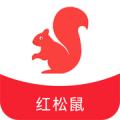 红松鼠app