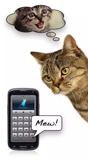 人猫交流器截图