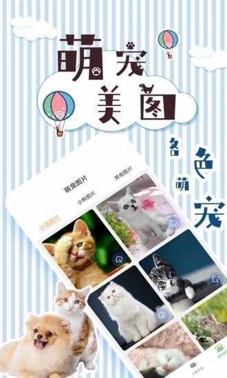 人猫翻译交流器截图