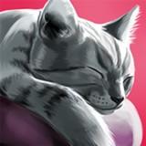撸猫模拟器