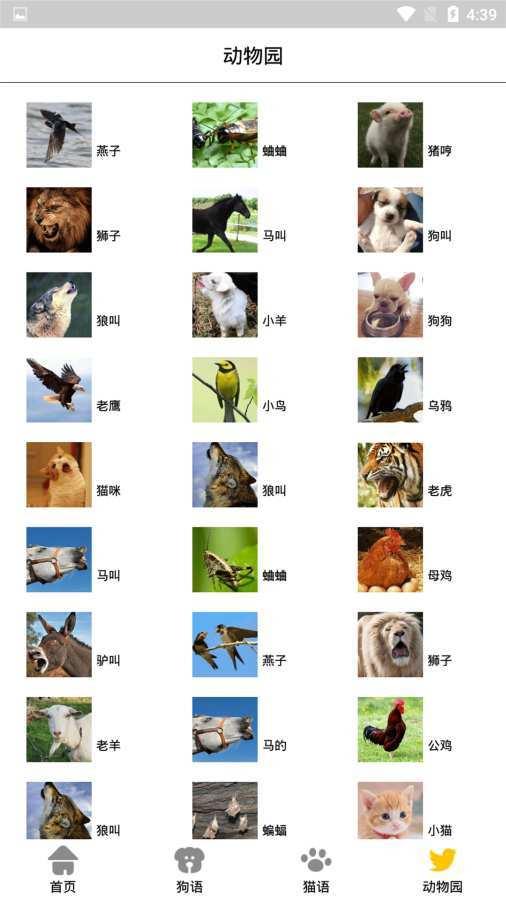 宠物翻译机截图