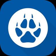 灰狼游戏神器app