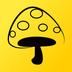 蘑菇丁旧版