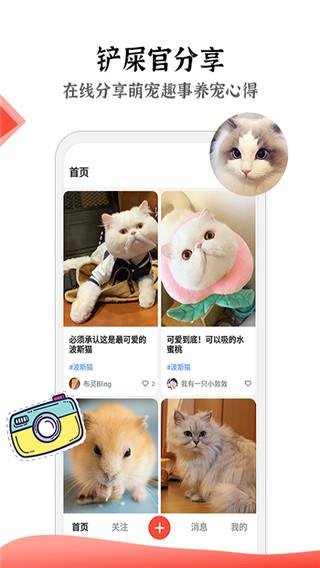 猫猫社截图