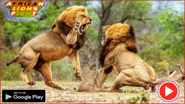 非洲狮模拟器游戏截图