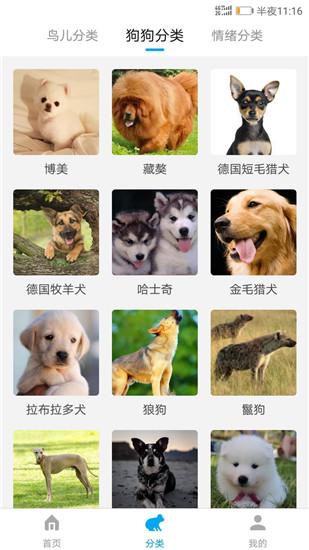动物翻译截图