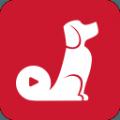 红小狗视频安卓版